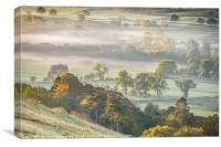 Morning Mist on The River Tees, Canvas Print