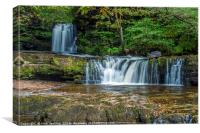 Lower Ddwli Waterfall Vale of Neath, Canvas Print