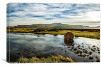 Pen y Fan and Corn Du from Mynydd Illtyd Common , Canvas Print