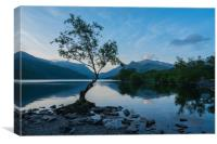 Lake Padarn Sunrise, Canvas Print