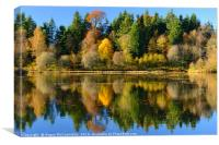 Autumn colours on Penicuik Pond 2016, Canvas Print