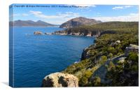 Cape Tourville looking towards Wineglass Bay, Canvas Print