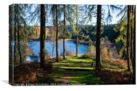 Wild camping in the Trossachs National Park, Canvas Print