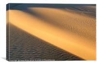 Beautiful sand dunes of the Rancho Guadalupe Dunes, Canvas Print