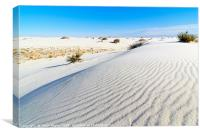 Early morning view of the sand dunes in White Sand, Canvas Print
