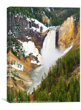 Yellowstone Falls in Spring Time, Canvas Print