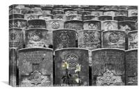 WW1 Graves, Canvas Print