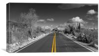 The road goes on for ever in Saguaro national park, Canvas Print