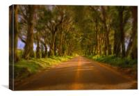 Famous Tree Tunnel of Eucalyptus on Kauai, Canvas Print