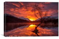 Fire in the sky!, Canvas Print