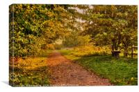 Barnwell Country Park, Canvas Print
