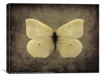 Vintage Butterfly, Canvas Print