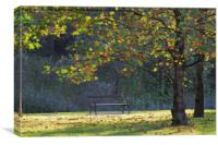 tree in the park, Canvas Print