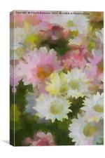 daisies in the garden, Canvas Print
