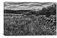 Dry Stone Wall Black And White, Canvas Print