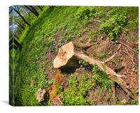 Stump of the cut tree on the edge of the forest, Canvas Print