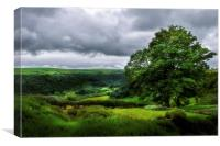 Looking over the Gwaun Valley, Canvas Print