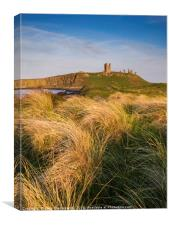 Golden light at Dunstanburgh Castle, Canvas Print