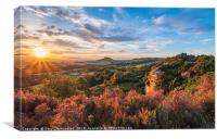 Summertime at Roseberry Topping , Canvas Print