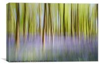 Dreamy Forest, Canvas Print
