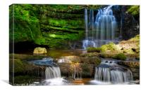 Scaleber Force in Summer Coat, Canvas Print