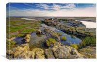 The Rock Pools at the End of Humphrey Headland, Canvas Print