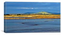 Steart Marshes in late winter sunlight            , Canvas Print