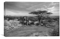 Storm clouds over the Masai Mara, Canvas Print