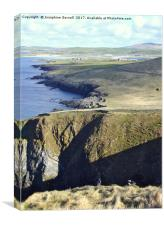 A Puffin's view of Shetland, Canvas Print