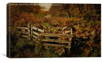 Ardinning Loch Path, Canvas Print
