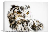 Eagle Owl, Canvas Print