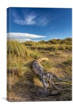 A fallen tree resting on the sand dunes, Canvas Print
