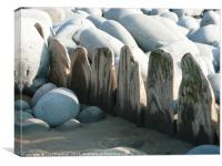 Boulders and wood , Canvas Print