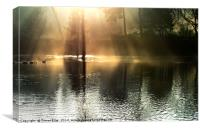 Early Light over Thornton Reservoir, Canvas Print