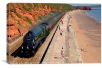 The 'Torbay Express' at Dawlish, Canvas Print