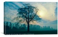 Trees in Winter, Derbyshire, Canvas Print