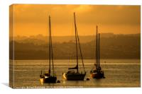 Moored Yachts at Sunset, Canvas Print