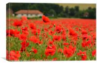 A field of red, Canvas Print