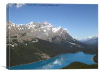 Peyto Lake, Banff National Park, Canada, Canvas Print