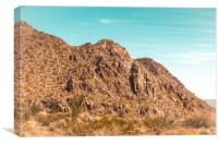 Landscape Joshua Tree 7339, Canvas Print