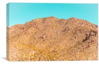 Landscape Joshua Tree 7342, Canvas Print