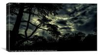 The Night Comes..., Canvas Print