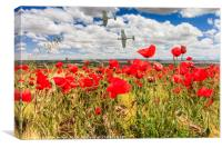 Poppy field and clouds, Granada Province, Spain, Canvas Print