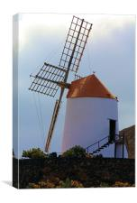 Windmill at Guatiza, Canvas Print