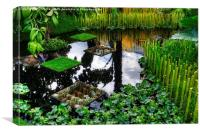 RHS Chelsea World Vision Garden, Canvas Print