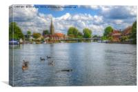 Marlow, Canvas Print