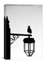 Gull Silhouette, Canvas Print