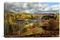 Autumn at Tarn Howes in The Lake District., Canvas Print