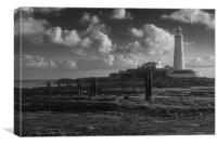 St Mary's Lighthouse 2019, Canvas Print