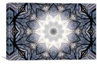 A bright star in the dark woods, Canvas Print